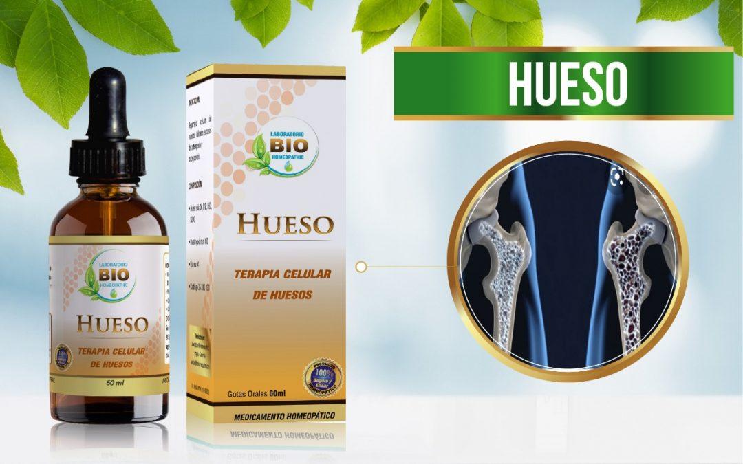 HUESO